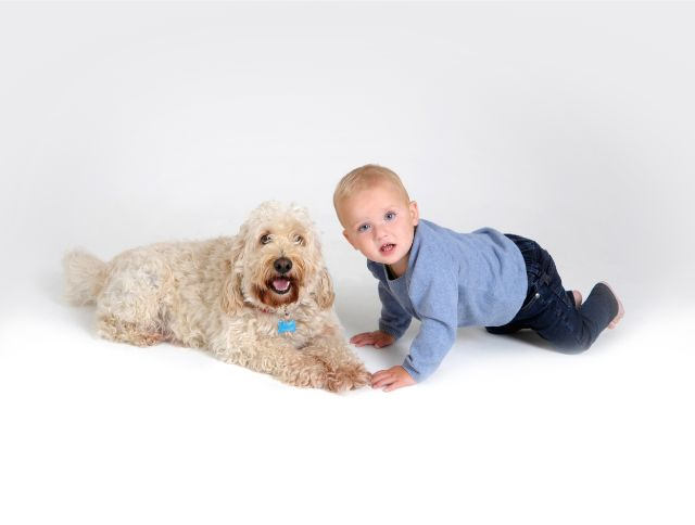 Images Unlimited - Pet Photography 17